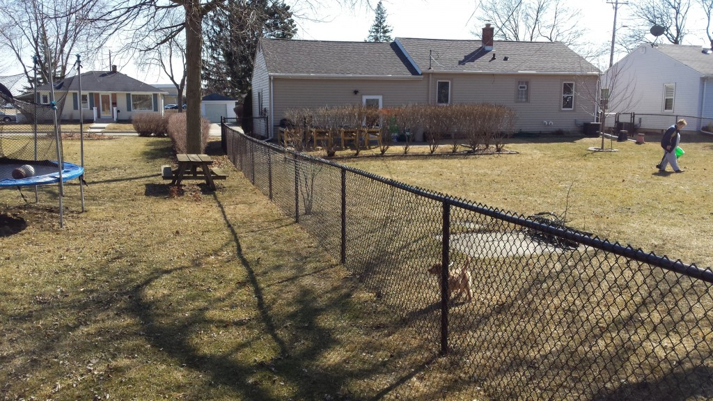 chain link fencing brown
