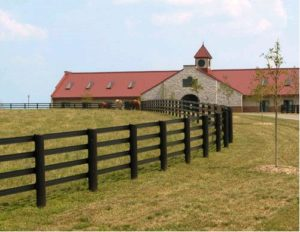 Centaur horse fence picture